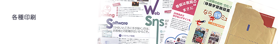 subimg_print